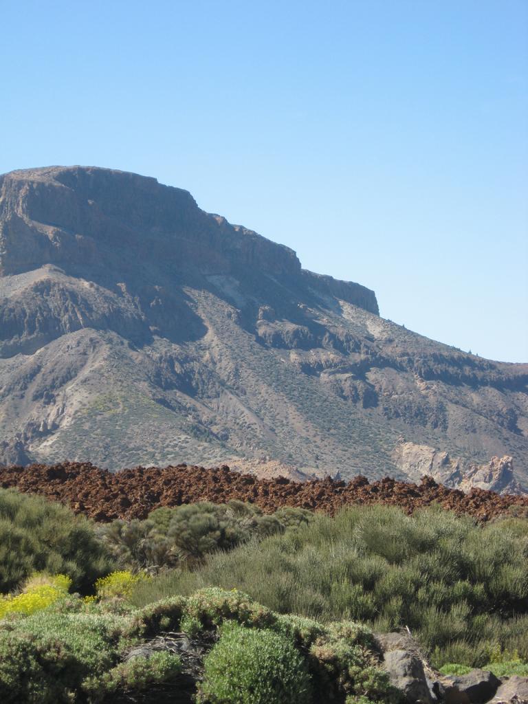 Tenerife Mai 2008 (493).JPG