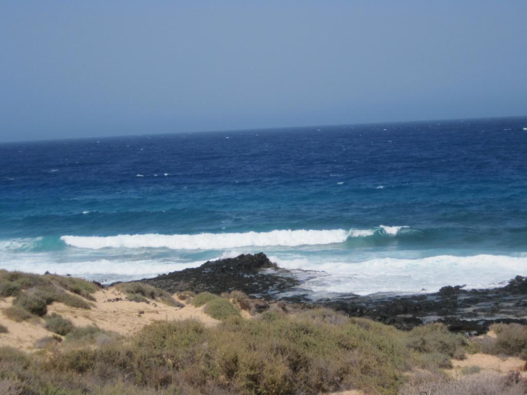 Fuerteventura Juni 2011 (26).JPG