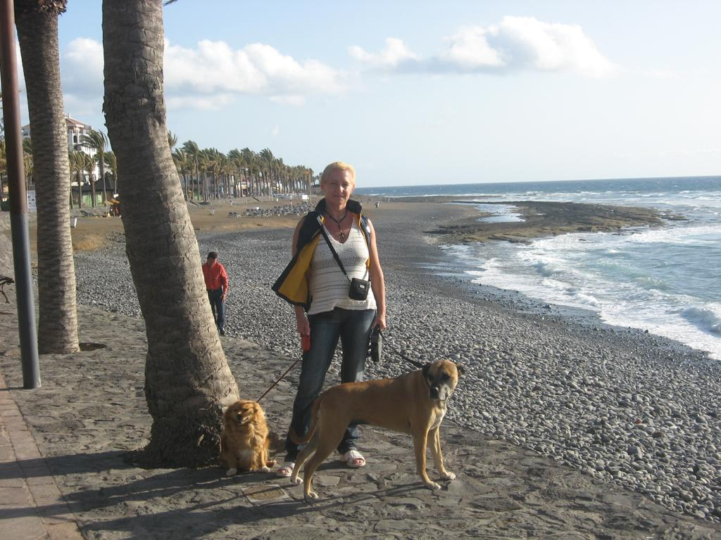 Tenerife Mai 2008 (137).JPG