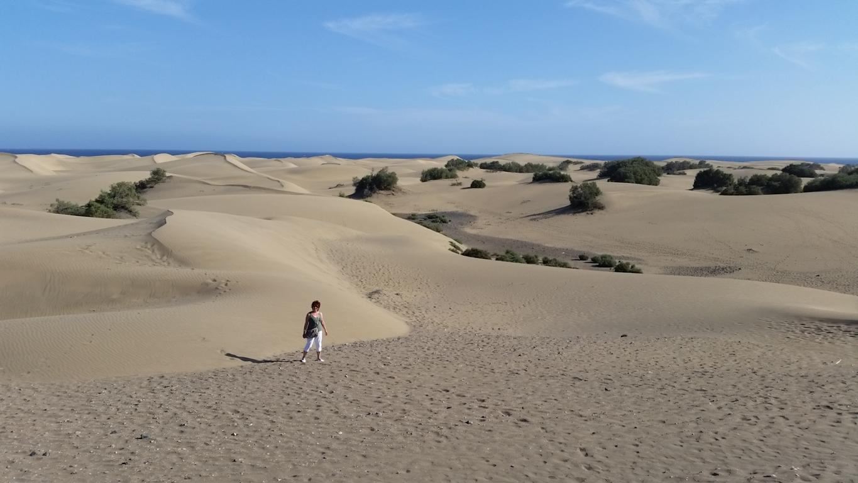 Gran Canaria Mai 2015 (75).JPG