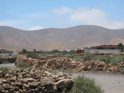 Fuerteventura Mai2009 (77).JPG