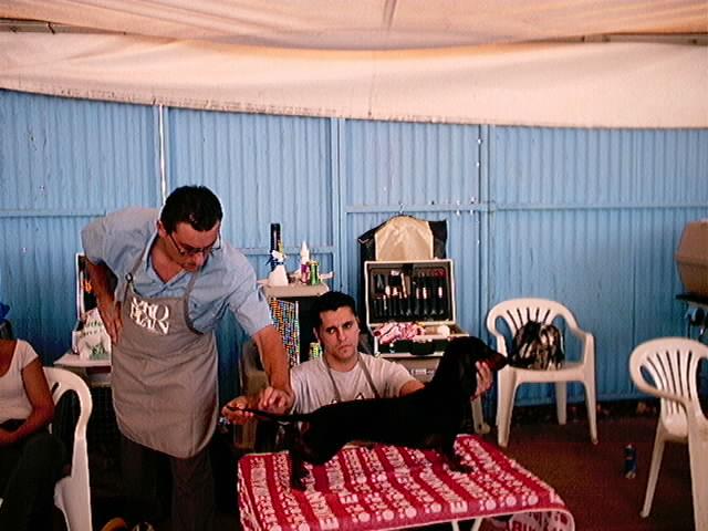 Hundeaustellung Fuerte Oktober 2001 (16)