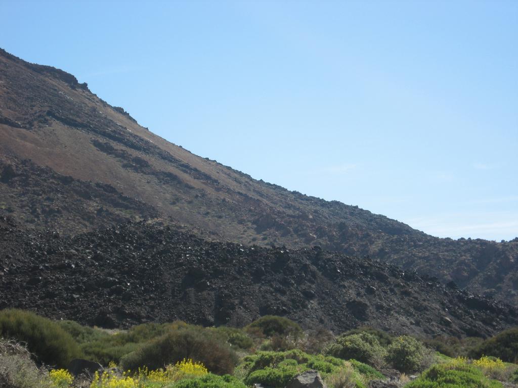 Tenerife Mai 2008 (510).JPG