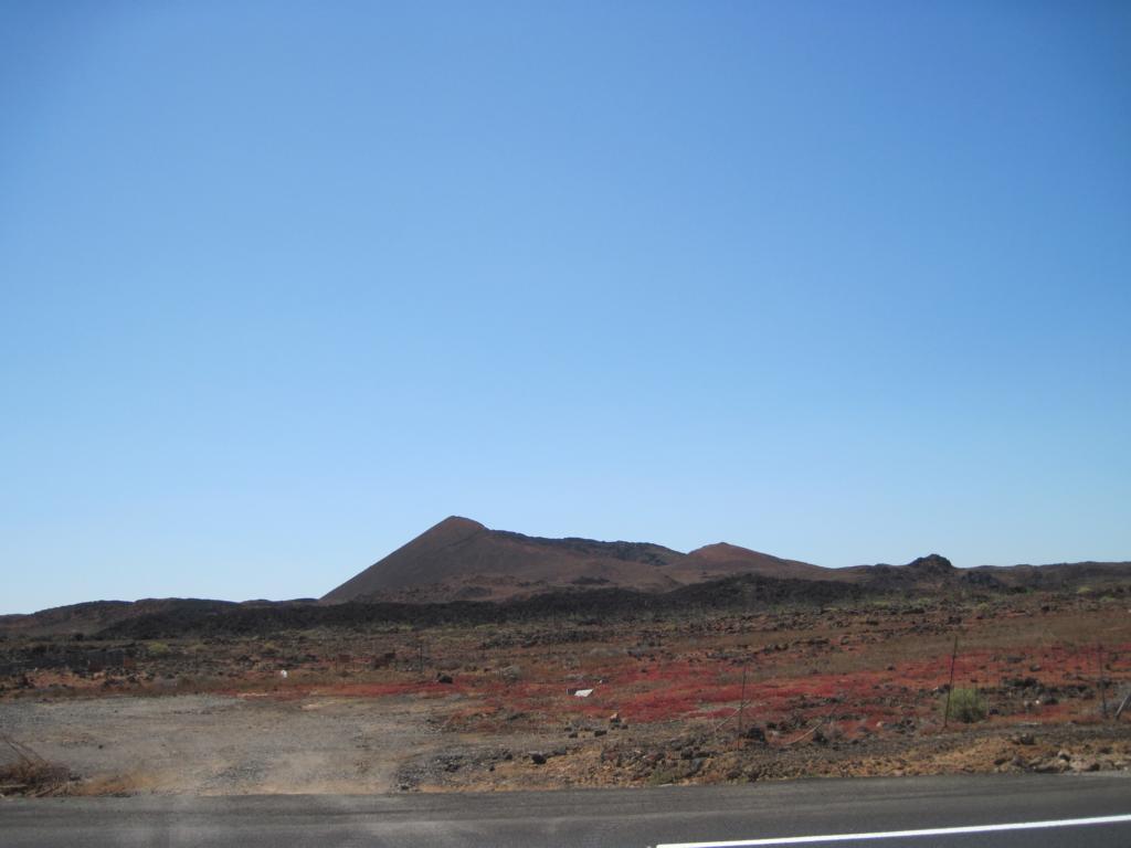Fuerteventura Juni 2011 (69).JPG