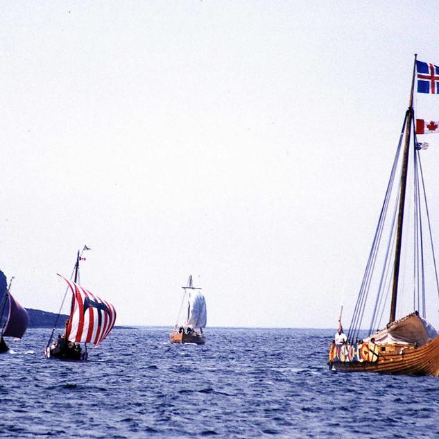 Viking_landing.jpg
