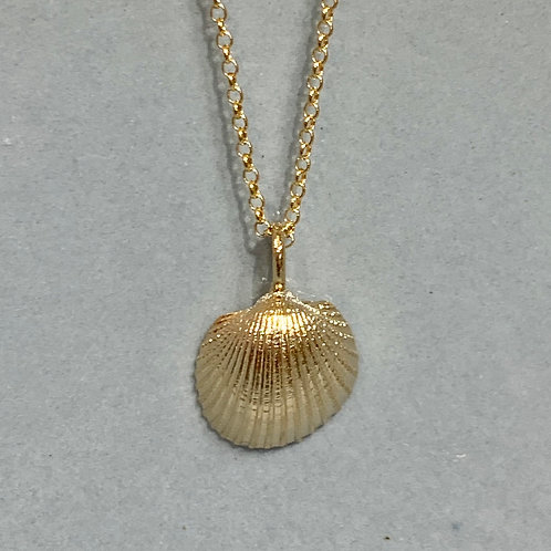 Clam on Plain Necklace - Gold