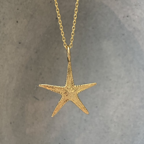 Starfish on Plain Necklace - Gold