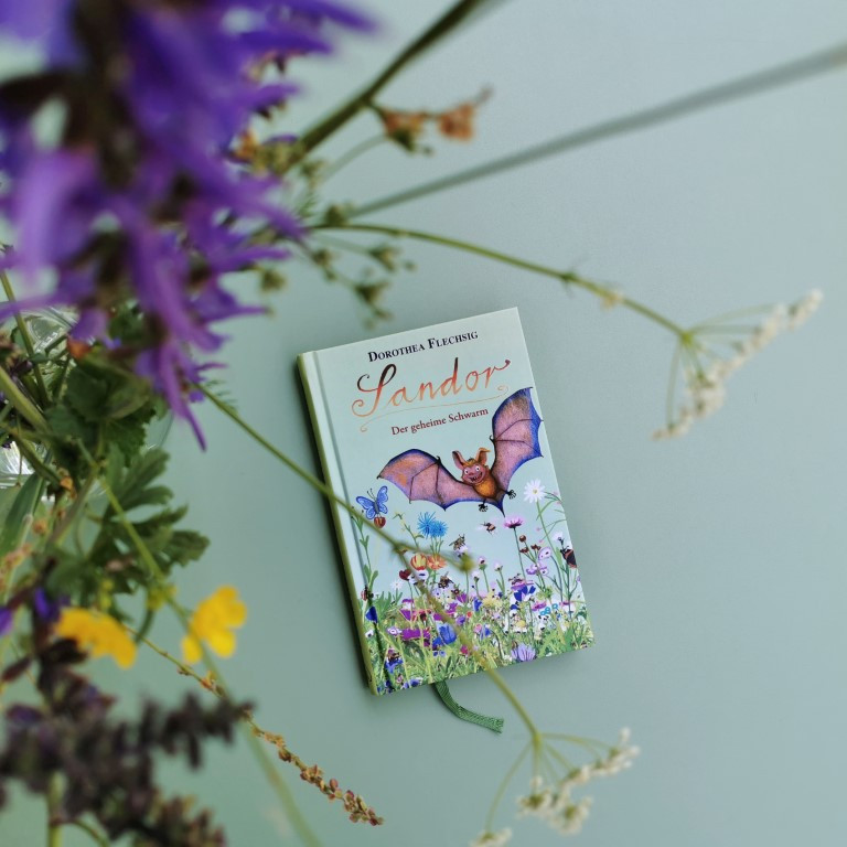 MINT & MALVE Buchtipp: Sandor - der geheime Scharm, Dorothea Flechsig, Glückschuh Verlag, 2019