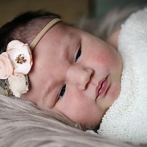 Charlee's Newborn's