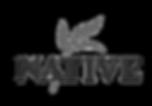 Logo-Native.png