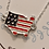Thumbnail: 4th of July Flag Necklace