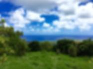 1772 Hana Highway - Land for sale in Hana, Maui