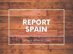 REPORT SPAIN.png