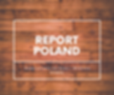 REPORT POLAND.png