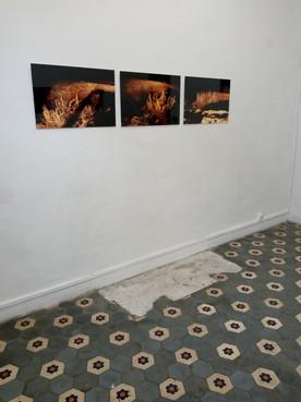 Salle d'expo photographique Lumières en fuite, photos d'art nocturnes avec éclairage phare