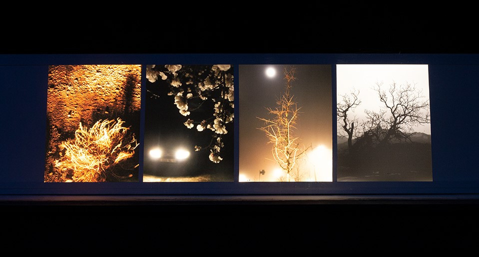 Caisson lumineux photos artistiques de nuit