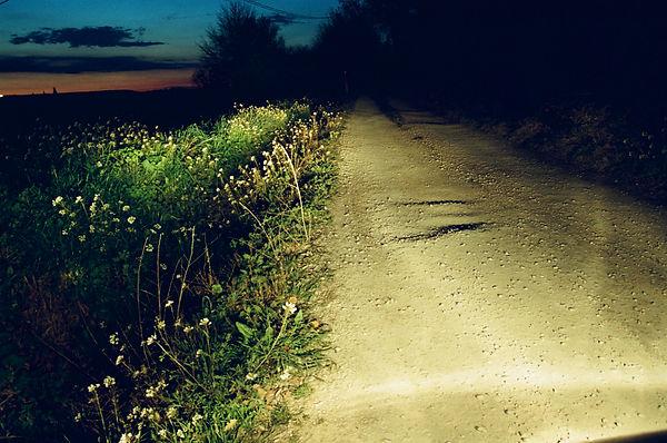 Par les chemins