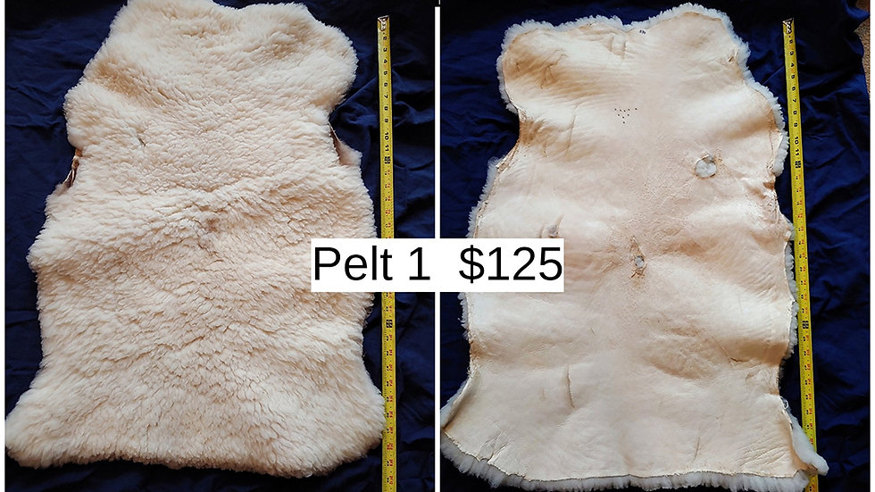 Cozy, Soft Sheep Pelt #1