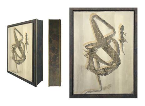 snake shed + lizard