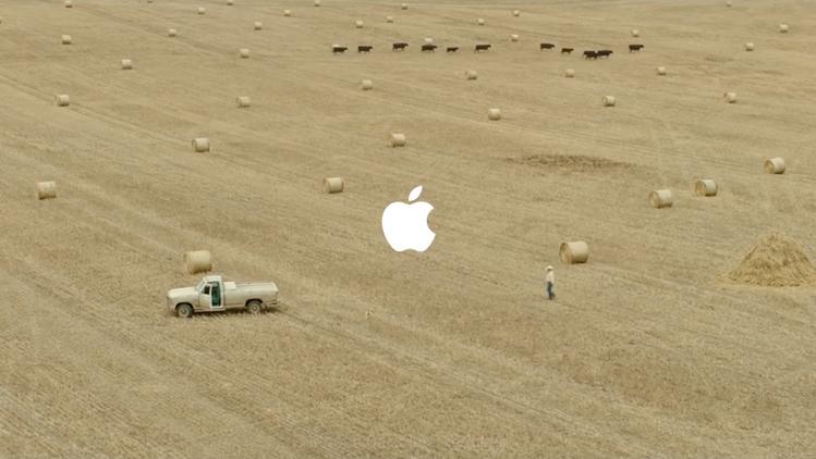 Apple - Haystack