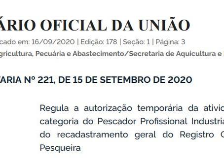 Autorização temporária da atividade pesqueira, Pescador Profissional Industrial
