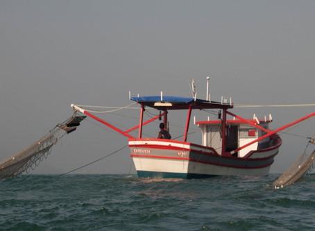 Pesca artesanal do camarão sete barbas vira patrimônio cultural imaterial de Penha