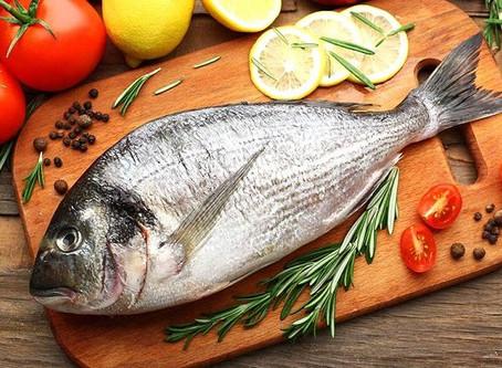 CNA aponta tendências para o mercado de pescado.