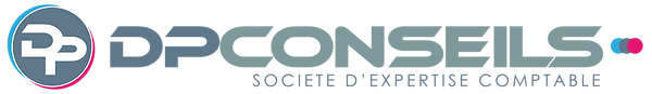 LOGO DPCONSEILS LONG.png