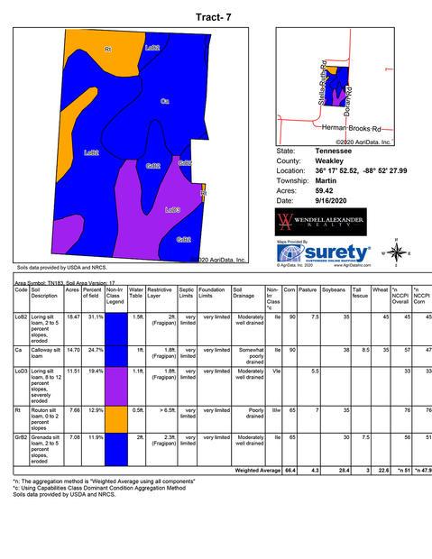 Soil Map - Tract 7.jpg