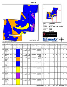 Soil Map - Tract 6-1.jpg