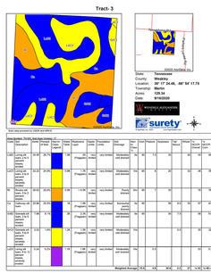 Soil Map - Tract 3-1.jpg