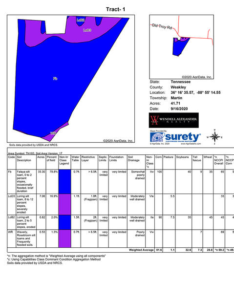 Soil Map - Tract 1.jpg
