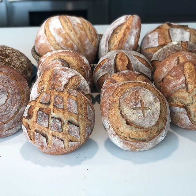 Today's bake #bakeamericagrainagain.jpg