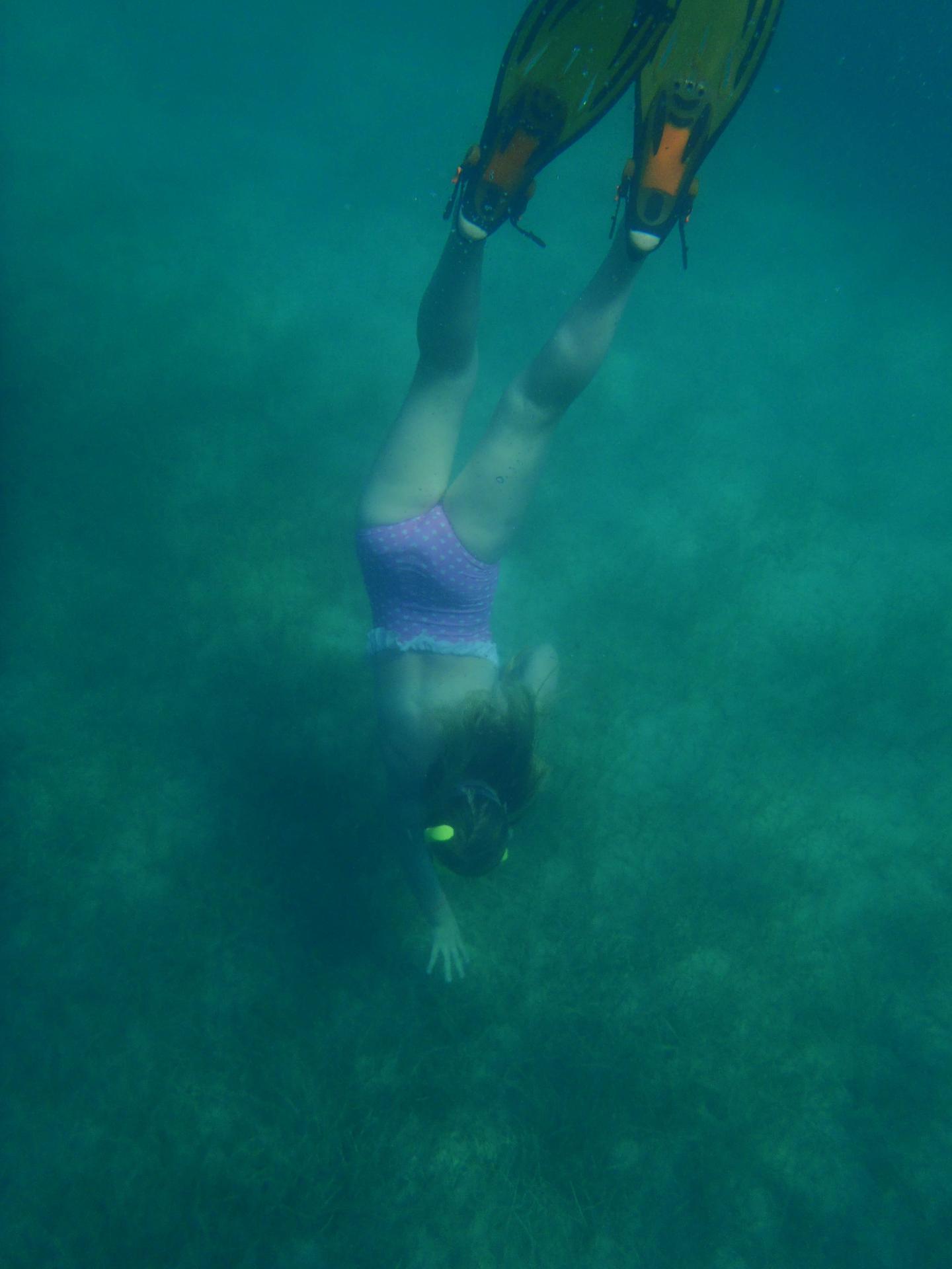 Snorkelklubben Stenen2_edited.jpg