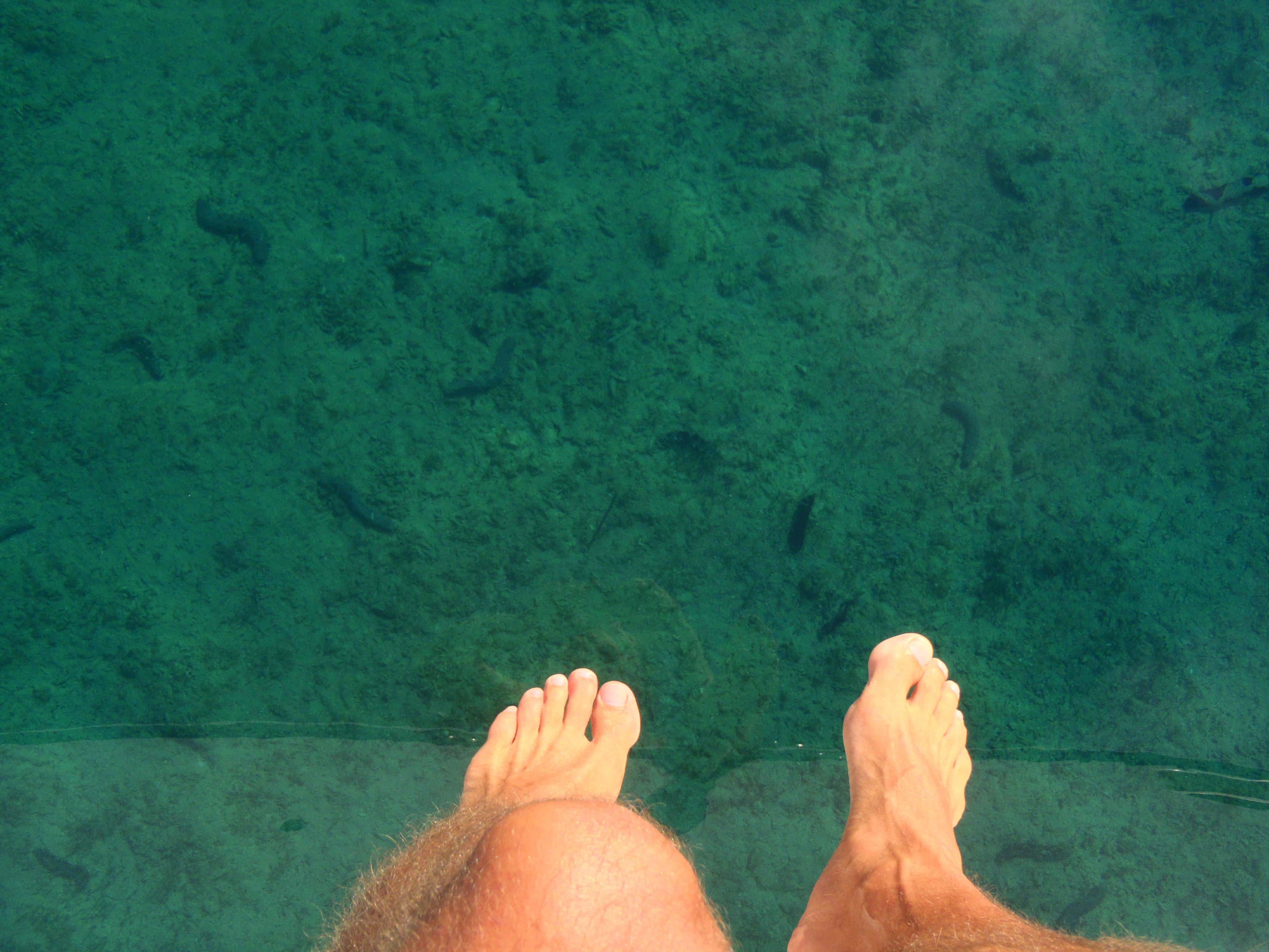 Rent vand.jpg
