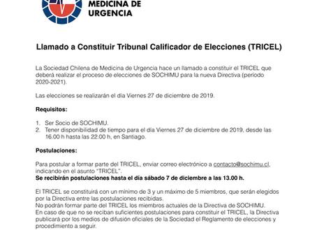 Llamado a conformar Tribunal Calificador de Elecciones (TRICEL)