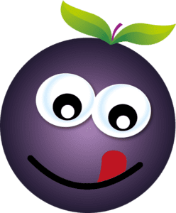 Berry-Delicious-248x300.png