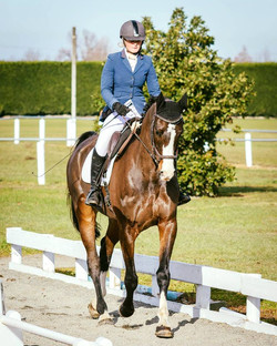 Rangiora Dressage Level 2 2017
