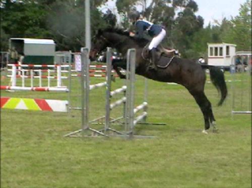 Amberley Jumping Day