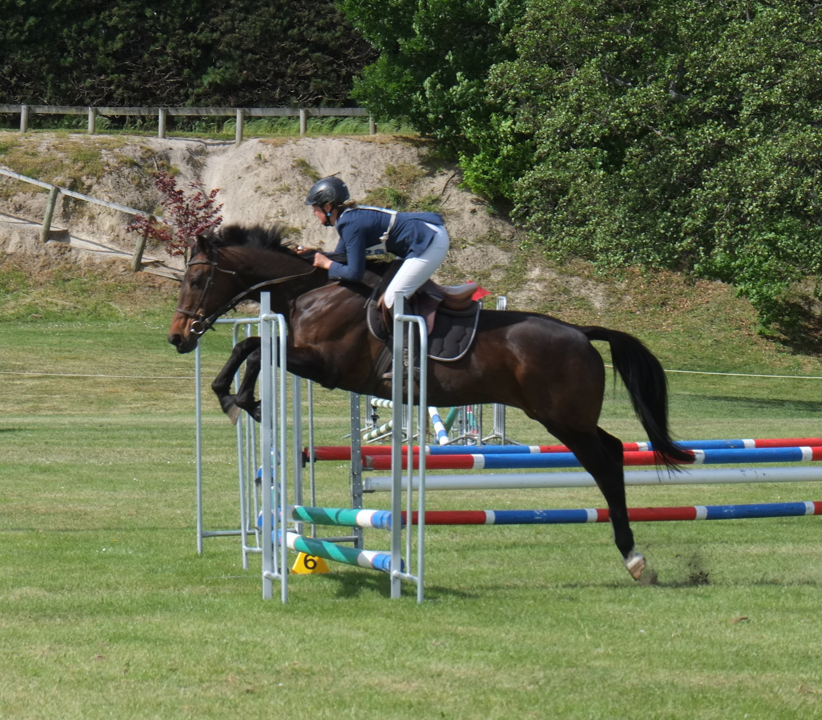 Amberley Jumping Day