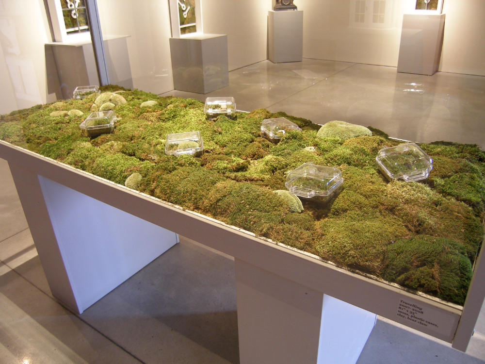 Christian Bernard Singer Untitled 15, 2008 From Cabinets of Curiosities series Moss, clay, found objects