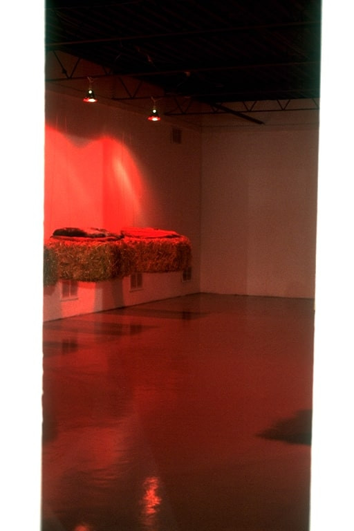 Christian Bernard Singer Found Skins, 1999 Smoke-fired ceramic, hay bales, Duponi silk, cable, red lights Art System Gallery, Toronto