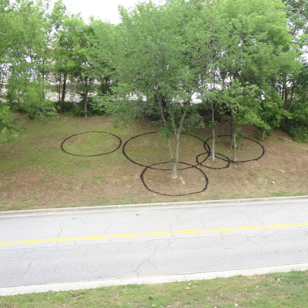 Christian Bernard Singer Circles II, 2012 Black mulch and trees Dimensions variable Savannah College of Art and Design (SCAD - Atlanta)