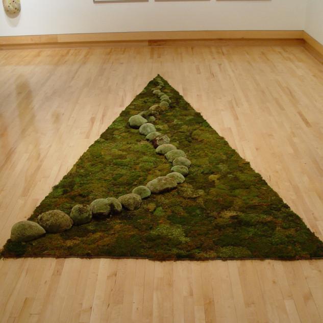 "Christian Bernard Singer Untitled Meandering IV, 2009 Mosses on wood 8' x 14' x 6"""