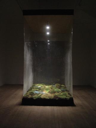 Christian Bernard Singer Enclosure II, 2003 Moss, bronze, earth, plastic, light, wood 9' x 8' x 4' ArtSite, Wellsville, NY