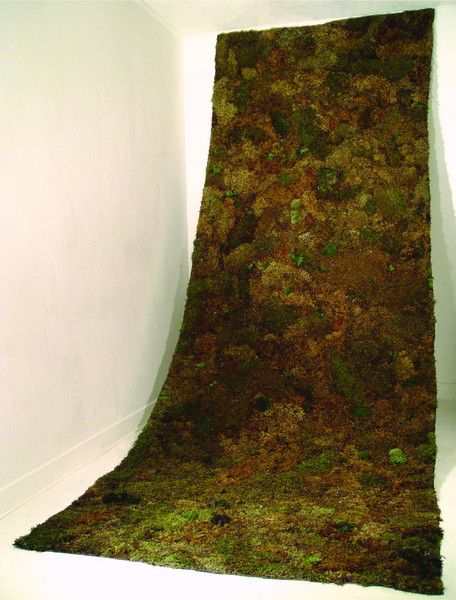Christian Bernard Singer Runner, 2003 Mosses on burlap 15' x 5.5' Installation at ArtSite, Wellsville, New York