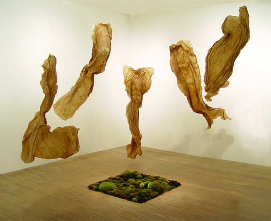Christian Bernard Singer Cosmogony, 2008 Abaca paper, moss and fishing line Dimensions variable