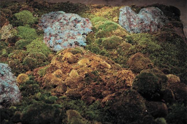 Christian Bernard Singer Enclosure II (detail), 2003 Moss, bronze, earth, plastic, light, wood 9' x 8' x 4' ArtSite, Wellsville, NY