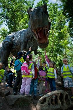 I za dinosaury se někdy podíváme