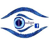Indigo Support Group